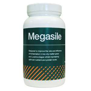 Megasile: Multi-strain forage additive
