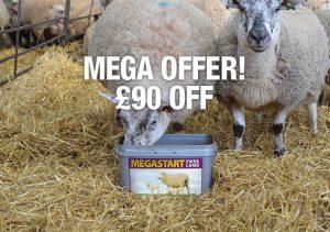 Megastart Ewe & Lamb Special Offer